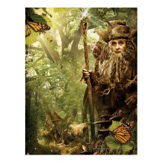 RADAGAST™ in Forest Postcards