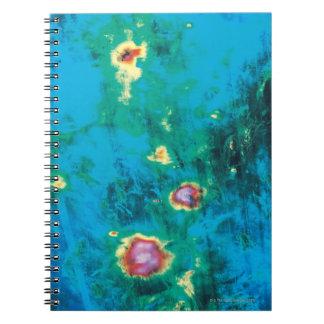 Radar Image Data Notebooks