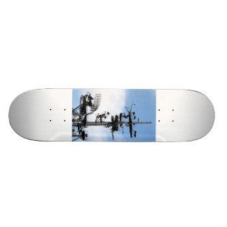 Radar Skateboard