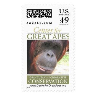 Radcliffe Postage Stamp