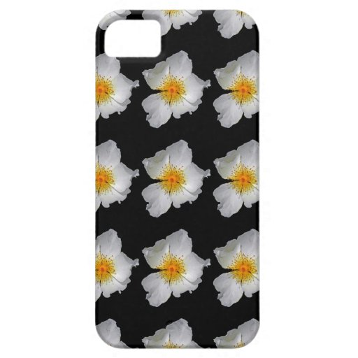 Radiance Delicate White Blossom iPhone 5 Cases