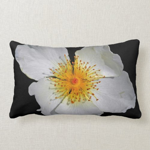 Radiance Delicate White Blossom Lumbar Pillow
