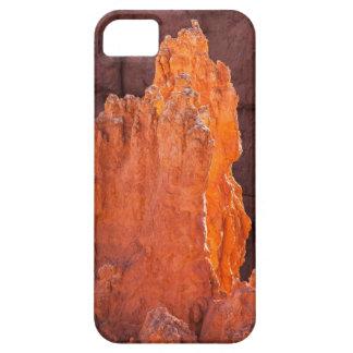 Radiance iPhone SE/5/5s Case
