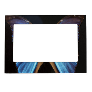 Radiant Blue Butterfly Magnetic Photo Frame