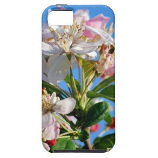 Radiant cherry blossom iPhone 5 case
