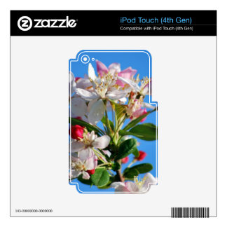 Radiant cherry blossom iPod touch 4G decals