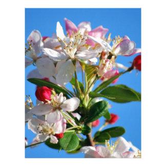 Radiant cherry blossom letterhead