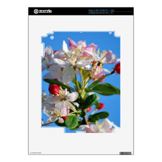 Radiant cherry blossom decals for iPad 2