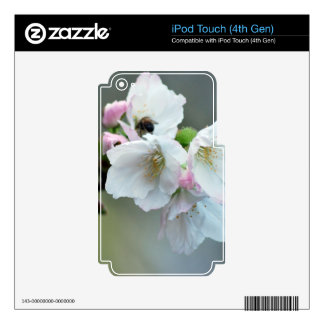 Radiant cherry blossom skin for iPod touch 4G