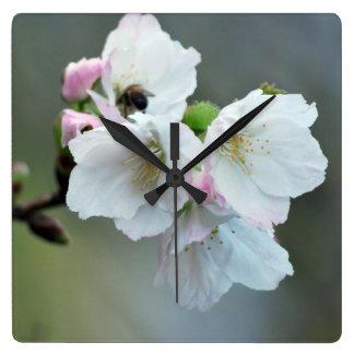 Radiant cherry blossom square wall clock