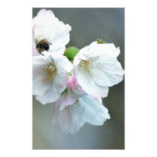 Radiant cherry blossom stationery