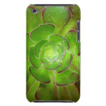 Radiant green succulent plant macro photography Case-Mate iPod touch case