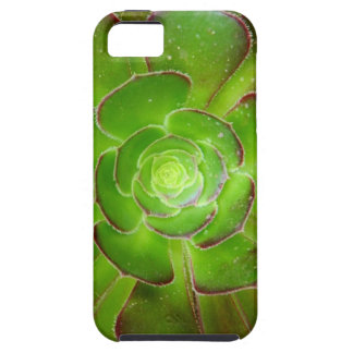 Radiant green succulent plant macro photography iPhone 5 case