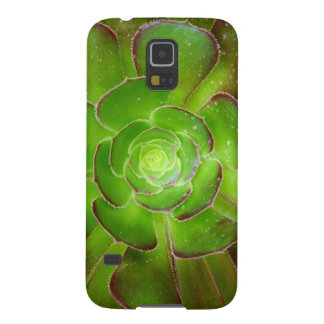 Radiant green succulent plant macro photography case for galaxy s5