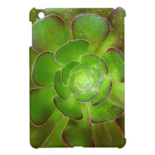 Radiant green succulent plant macro photography cover for the iPad mini