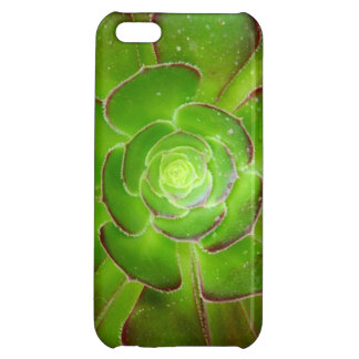 Radiant green succulent plant macro photography iPhone 5C case