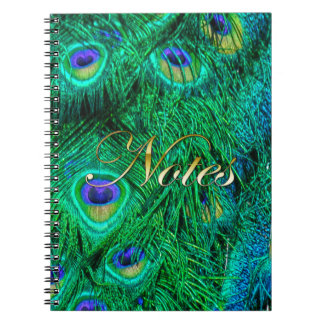 Radiant Peacock Feathers Photo Design Notebook