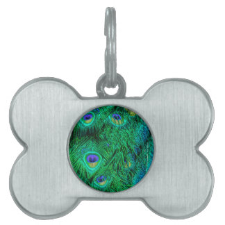 Radiant Peacock Feathers Photo Design Pet Tags