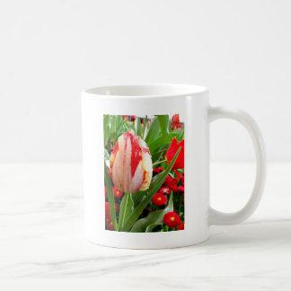 Radiant Red and White Tulip Coffee Mug