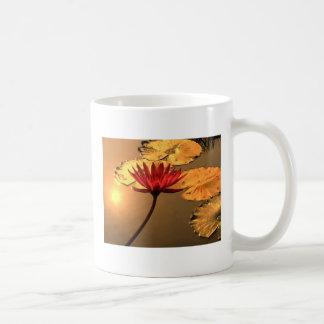 Radiant Water Lily with Spiritual Message Coffee Mug