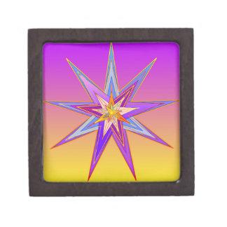 RadiantAcquiescense9 Jewelry Box