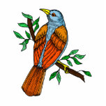 Radient Robin Acrylic Cut Out