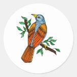 Radient Robin Sticker