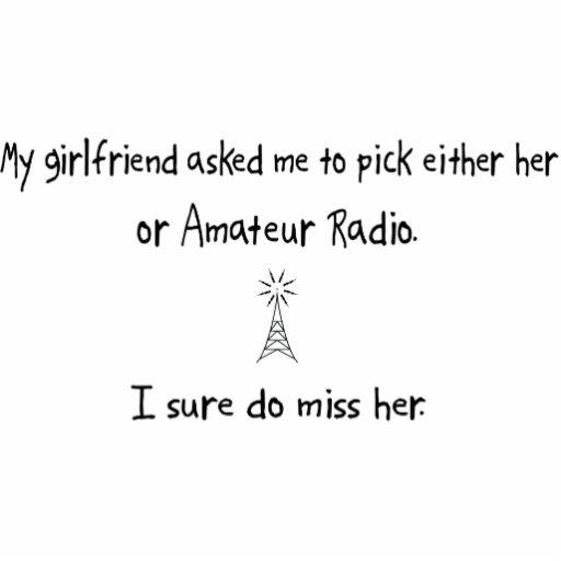 Radio de la novia o del aficionado de la selección esculturas fotográficas