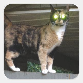 Radioactive kitty square sticker