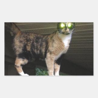 Radioactive kitty rectangular sticker