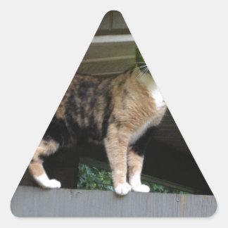 Radioactive kitty triangle sticker