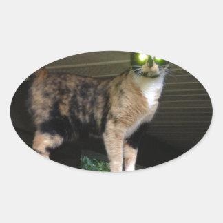 Radioactive kitty oval sticker