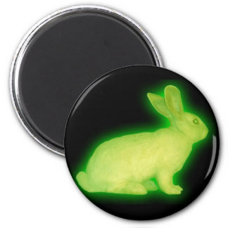 radioactive rabbit fridge magnets