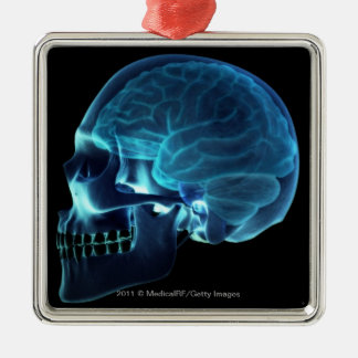 Radiografía del cerebro dentro de un cráneo adorno navideño cuadrado de metal