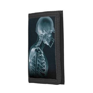 Radiografía del fútbol