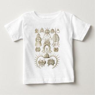 Radiolarians Baby T-Shirt