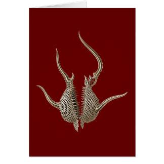 Radiolarians Card