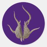 Radiolarians Sticker