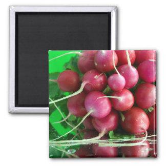 Radish Refrigerator Magnet
