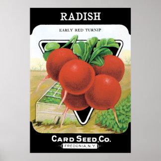 Radish Seed Pack Poster