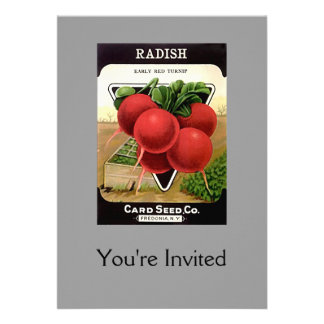 Radish Seeds from Card Seed Co