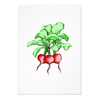 Radishes Personalized Announcement