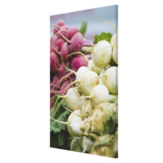 Radishes on display at farmer's market canvas print