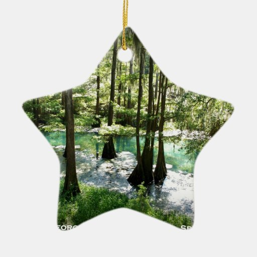 RADIUM SPRINGS - Albany, Georgia Christmas Ornaments