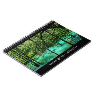 Radium Springs ~ Albany Georgia Spiral Notebook