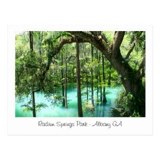 Radium Springs Park, Albany GA Postcard