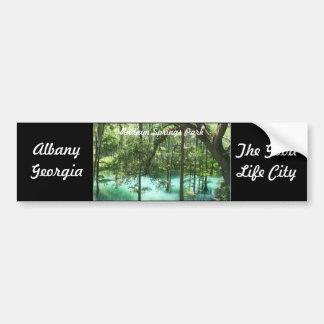 Radium Springs Park Albany GA. The Good Life City Bumper Sticker