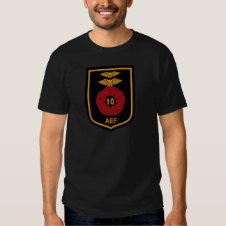 RAF Patch 10 Air Experience Flight AEF Crest Patch T-Shirt