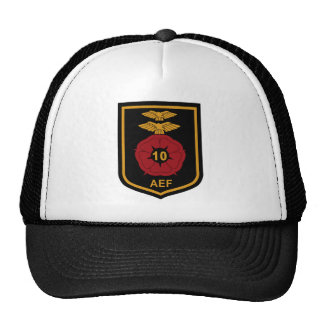 RAF Patch 10 Air Experience Flight AEF Crest Patch Trucker Hat