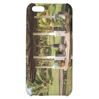 Rafael Farm iPhone 5C Case